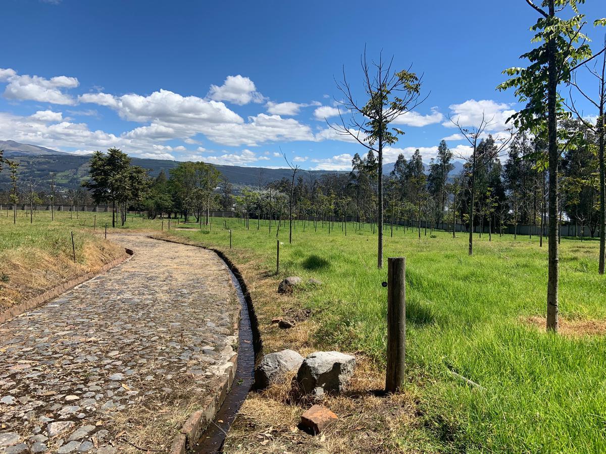 Foto Terreno en Venta en  Rumiñahui ,  Pichincha  COTOGCHOA