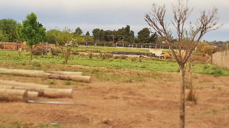 Foto Terreno en Venta en  Inti Hué,  Santa Rosa  Zona Chacras - Cercano Inti Hué