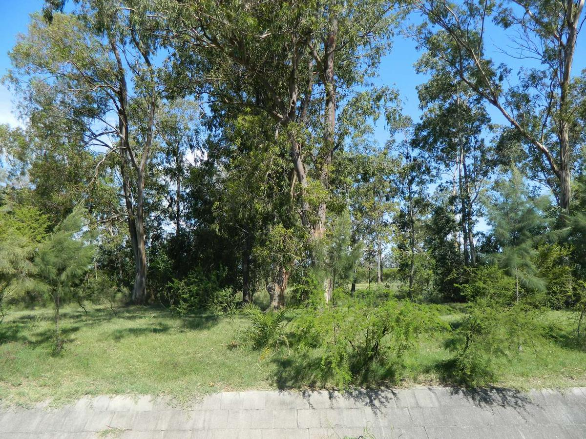 Foto Terreno en Venta en  Nueva Palmira ,  Colonia  Nueva Palmira