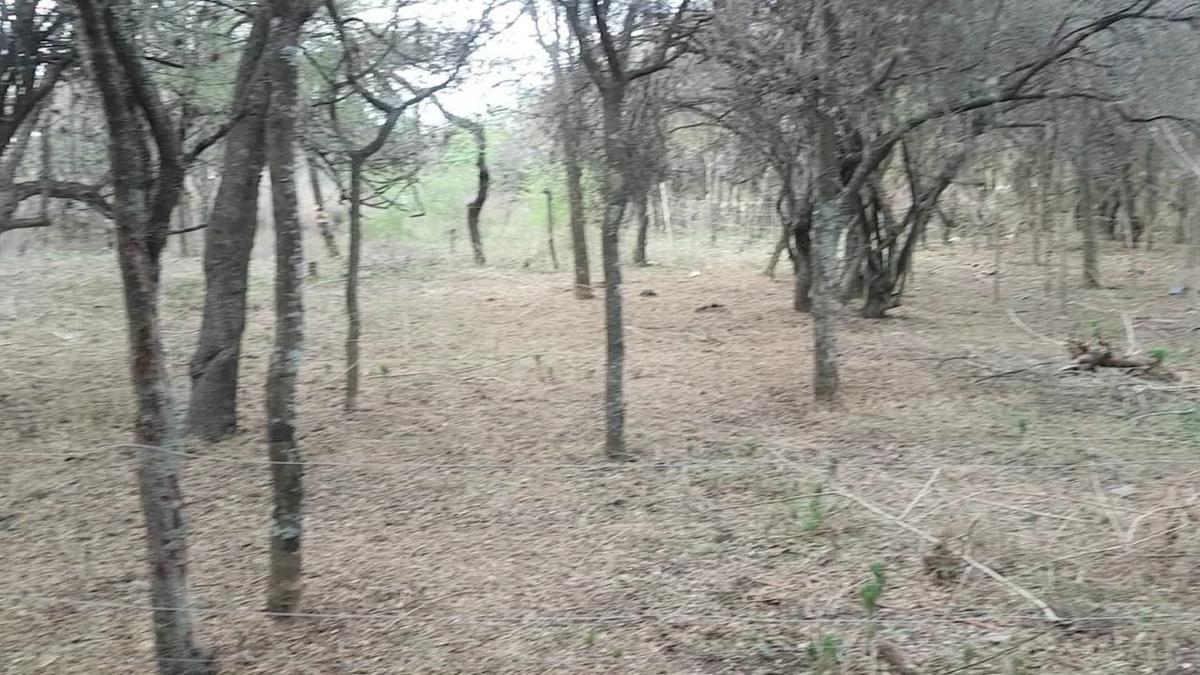 Foto Terreno en Venta en  Salsipuedes,  Colon  Salsipuedes. B° Villa Las selvas