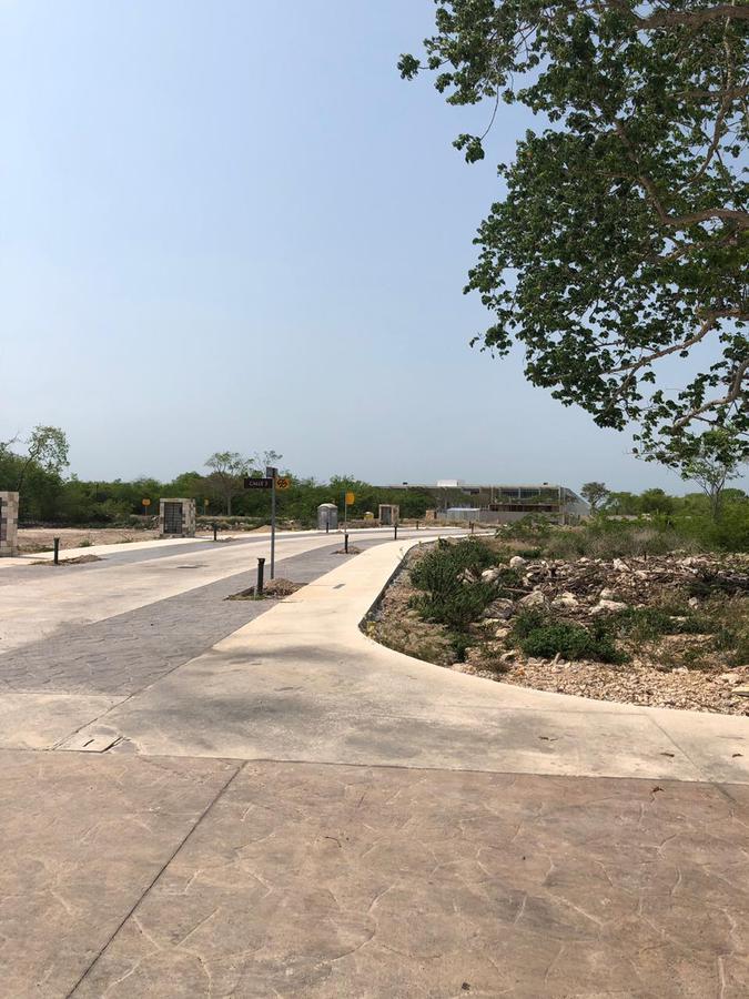 Foto Terreno en Venta en  Yucatán Country Club,  Mérida  Vendo dos lotes Residenciales en Paseo Country