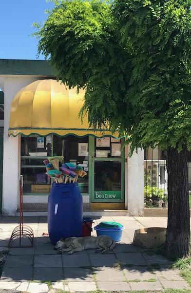 Foto Local en Venta en  Bella Vista,  San Miguel  Sourdeaux al 500