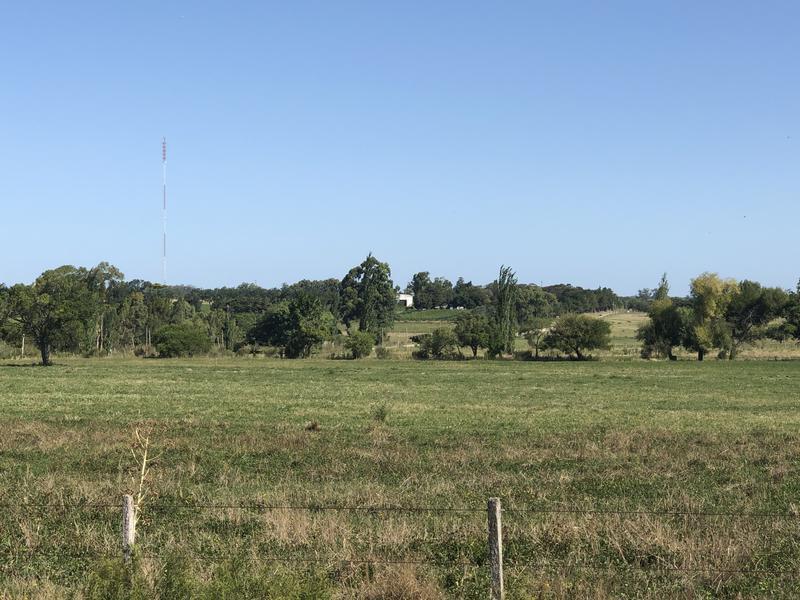 Foto Chacra en Venta en  Colonia del Sacramento ,  Colonia  Tula Suarez - 1 HÁ Bandita