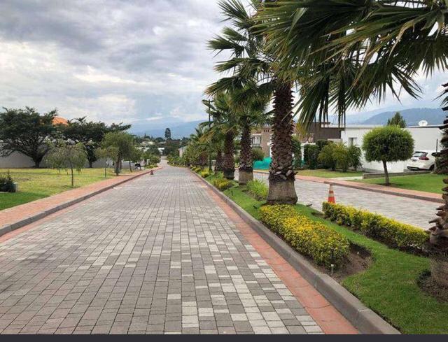 Foto Terreno en Venta en  Tumbaco,  Quito  TUMBACO SECTOR HILACRIL