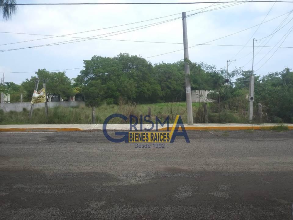 Foto Terreno en Venta |  en  La Mata,  Tuxpan  TERRENO EN LA MATA DE TAMPAMACHOCO