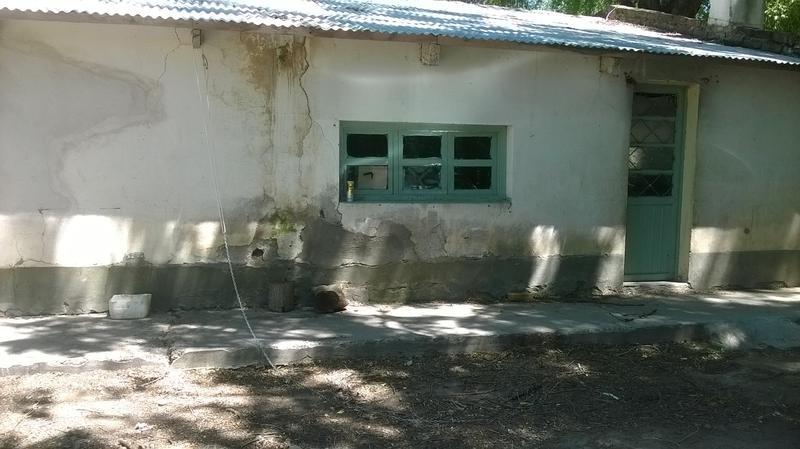 Foto Chacra en Venta en  Chichinales,  General Roca  CHACRA 17 HA. -CHICHINALES