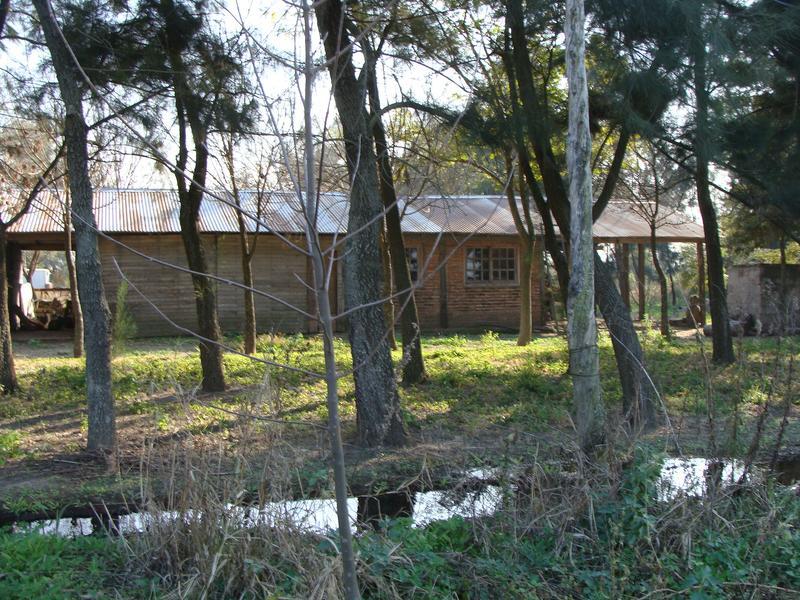 Foto Campo en Venta en  Las Cejas,  Cruz Alta  Las Cejas