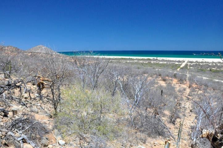 Foto Terreno en Venta en  Los Cabos ,  Baja California Sur  Los Cabos