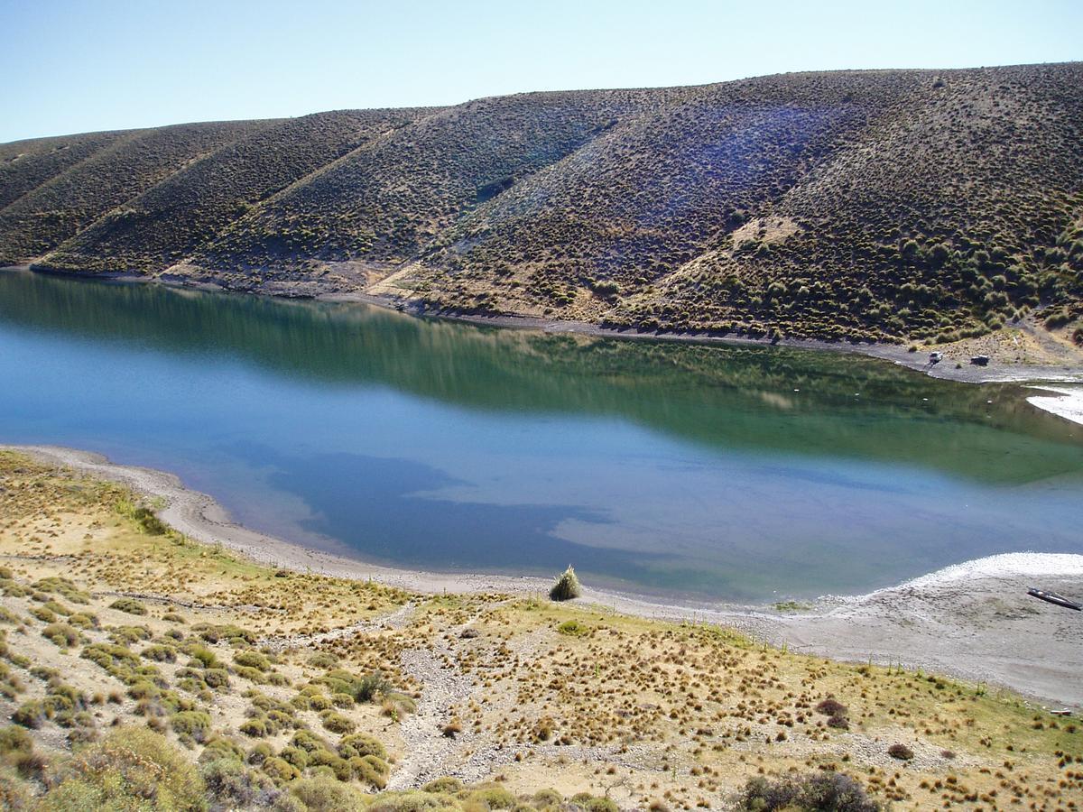 Foto Campo en Venta en  Alicura,  Collon Cura  Alicura