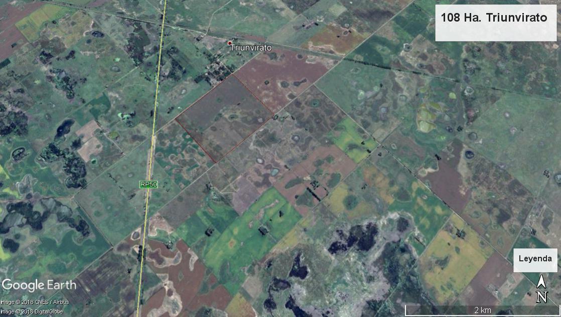 Foto Campo en Venta en  Triunvirato,  Lincoln  Triunvirato
