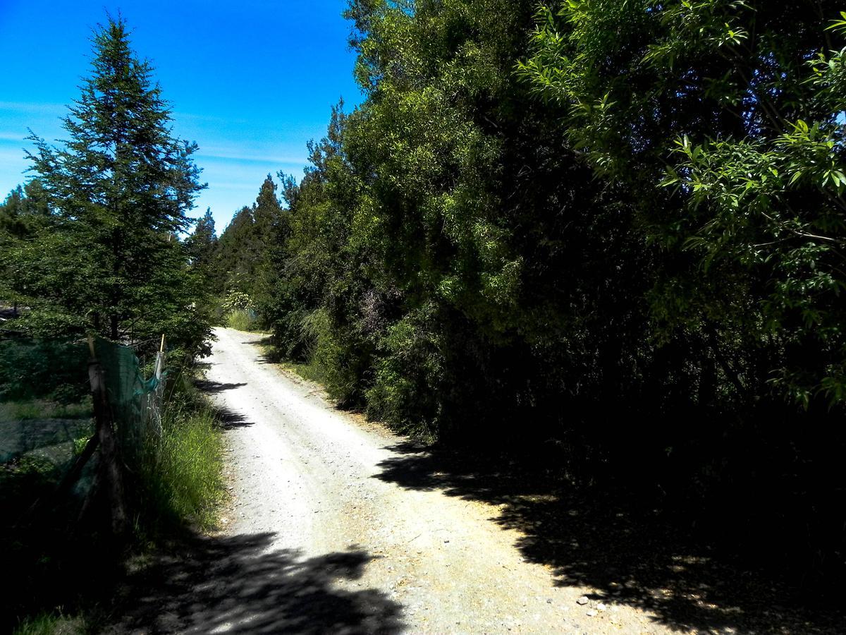 Foto Terreno en Venta en  La Cascada,  San Carlos De Bariloche  Sector Bosque Lindo
