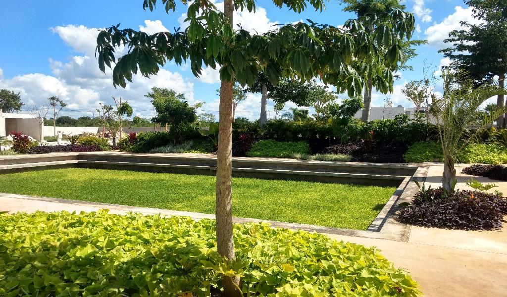 Foto Terreno en Venta en  Santa Gertrudis Copo,  Mérida  Terreno en piedra verde,Lote 25