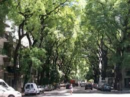 Foto Local en Venta en  Palermo ,  Capital Federal  Honduras y Av Cnel Díaz
