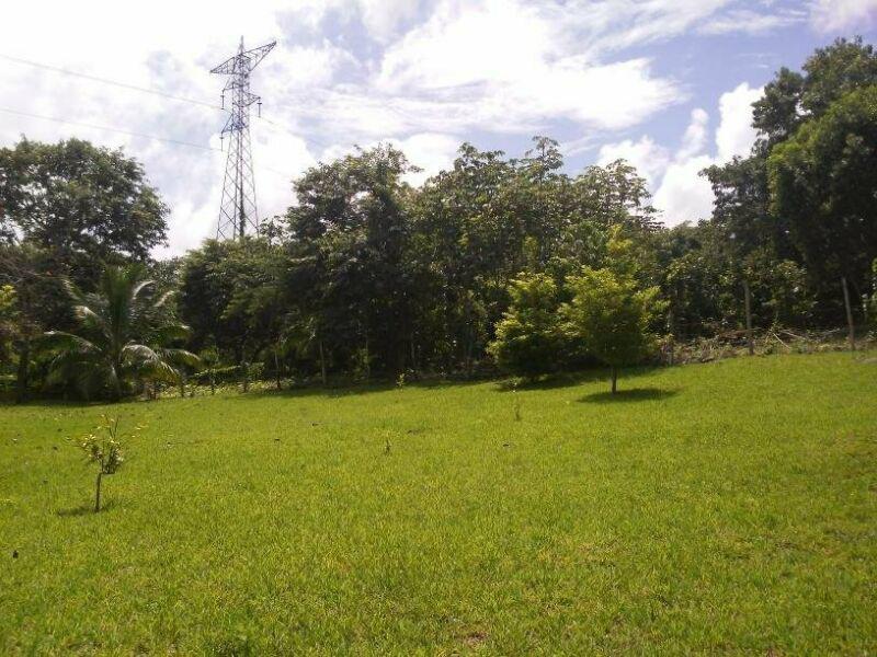 Foto Terreno en Venta en  Bacalar ,  Quintana Roo  Terreno en venta  en Bacalar sobre la Av 21