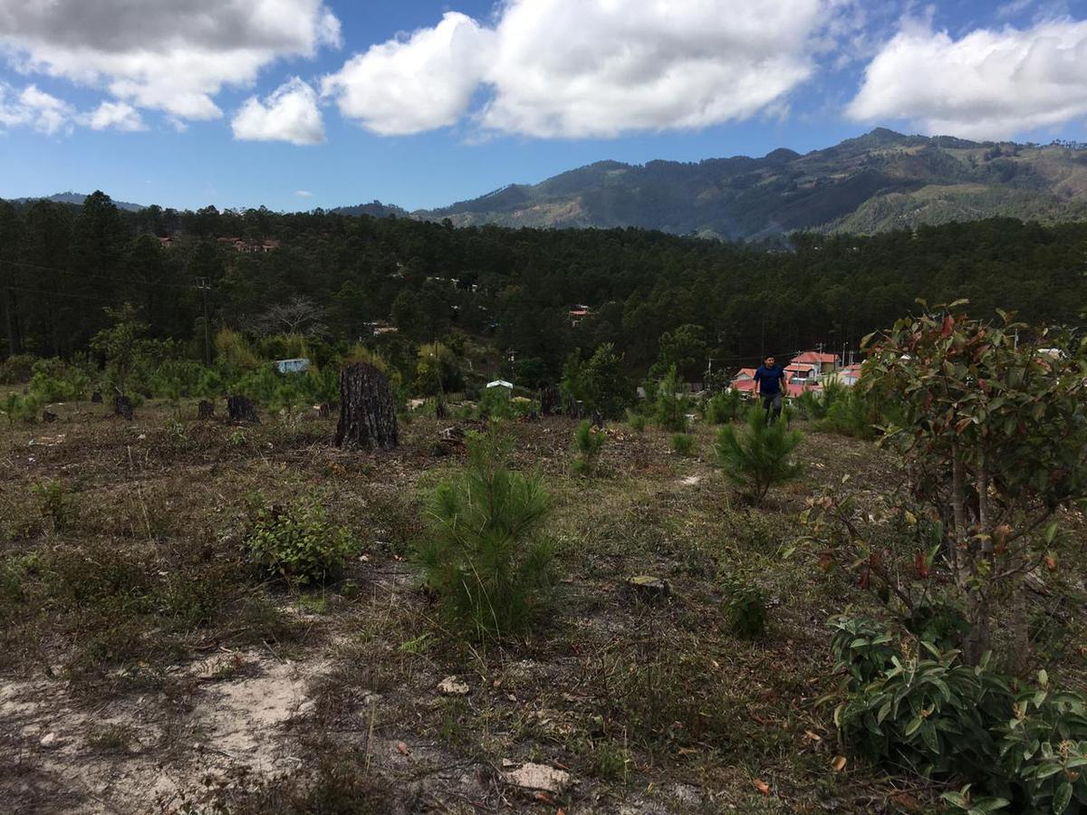 Foto Terreno en Venta en  Valle de Angeles ,  Francisco Morazán  Terreno en Venta en Valle de Angeles