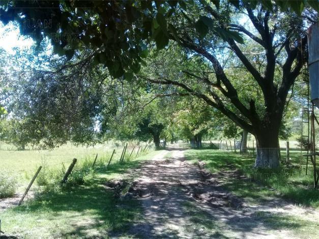 Foto Campo en Venta en  Abasto,  La Plata  32 e/ Ruta 36 y 195