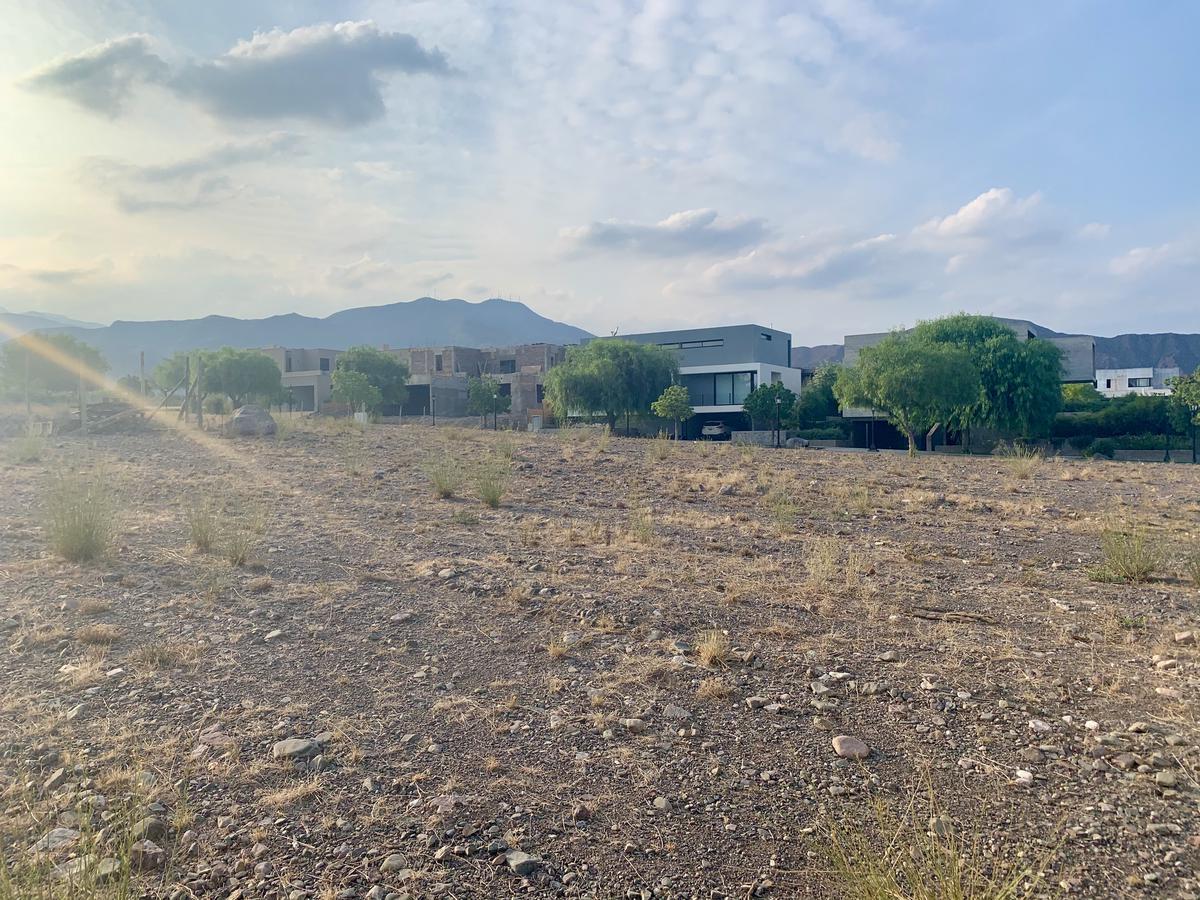 Foto Terreno en Venta en  Capital ,  Mendoza  DALVIAN Sector III