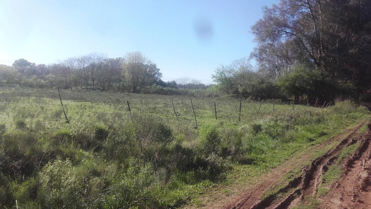 Foto Terreno en Venta en  Pavon,  Exaltacion De La Cruz  VENDIDO