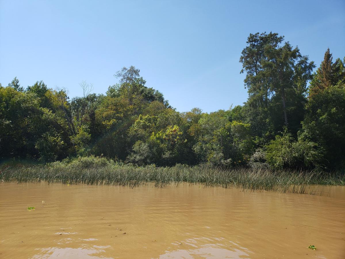 Foto Terreno en Venta en  Canal Arias,  Zona Delta Tigre  Canal Arias Lote Katz