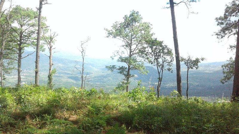 Foto Terreno en Venta en  El Hatillo,  Tegucigalpa  Terreno con Espectacular Vista en Venta , El Hatillo Km7, Tegucigalpa