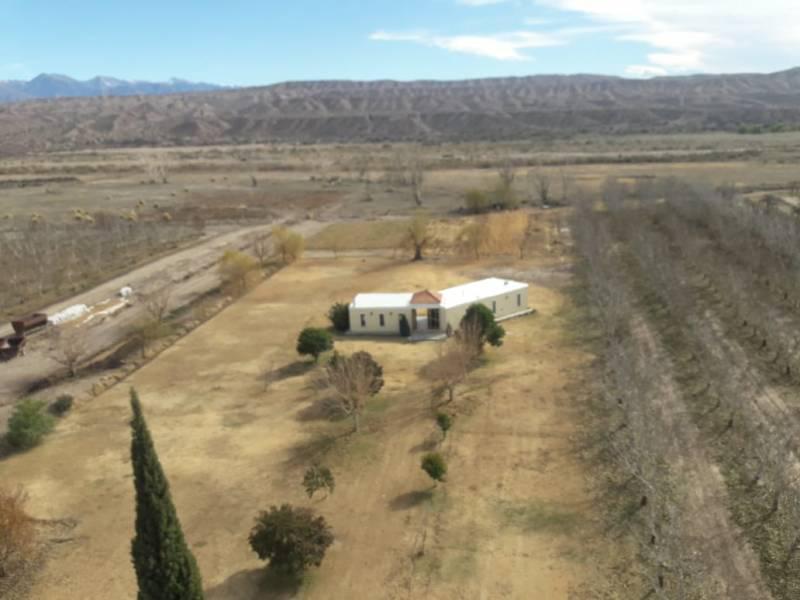 Foto Campo en Venta en  Calingasta ,  San Juan  Ruta al 400