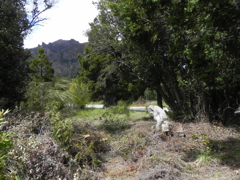 Foto Terreno en Venta en  Arelauquen,  Bariloche  Los Cipreses s/n Arelauquen