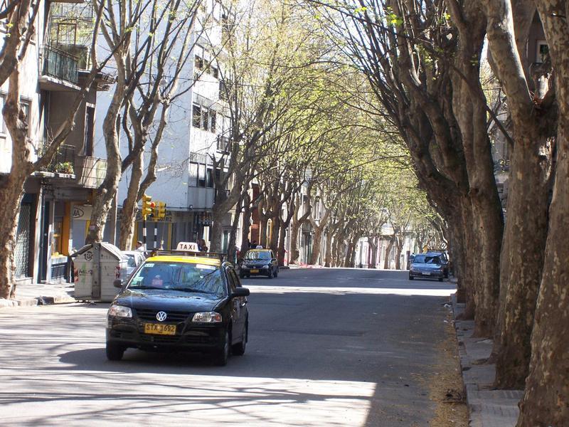 Foto Terreno en Venta en  Cordón ,  Montevideo  Terreno para edificio de 10 pisos en zona VIS de Cordón