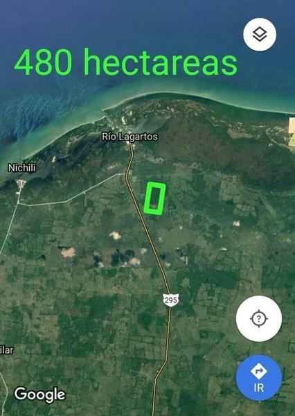 Foto Terreno en Venta en  Río Lagartos ,  Yucatán  TERRENO SE REMATAN 480 HECTAREAS CERCA DE TIZIMIN Y RIO LAGARTOS