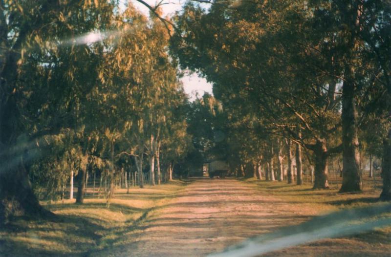 Foto Terreno en Venta en  San Vicente,  San Vicente  Ruta 58 y Ruta 16 - Canning / San Vicente