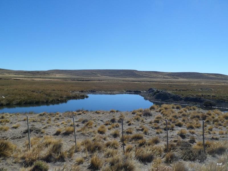 Foto Campo en Venta en  Bariloche ,  Rio Negro  Bariloche
