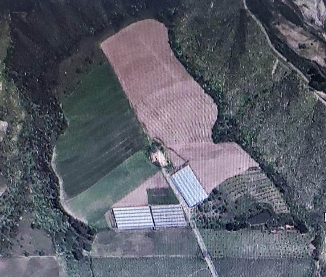Foto Terreno en Venta en  Pimampiro ,  Imbabura  San Pedro de Pimampiro