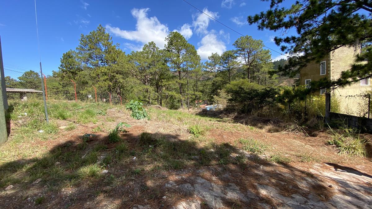 Foto Terreno en Venta en  Residencial Pinares del Uyuca,  Distrito Central  Terreno en Lomas del Pinar, Salida a Danli