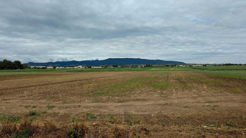 Foto Terreno en Venta en  San Juan de las Huertas,  Zinacantepec  Terreno 4 hectáreas, Zinacantepec,  a media cuadra de Calzada Pacífico, Cerca Tren Ligero