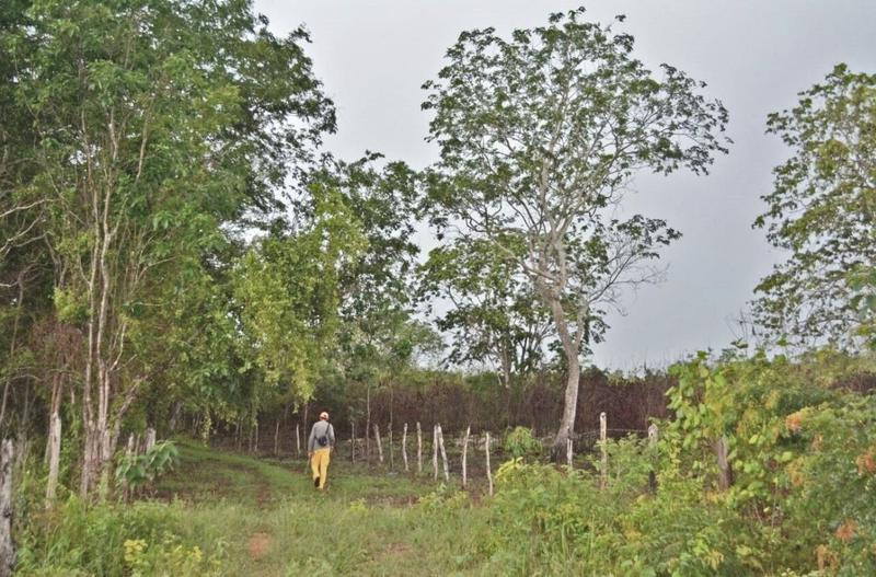 Foto Terreno en Venta en  Villa Espita,  Espita  Espita Yucatan