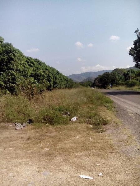 Foto Terreno en Venta    en  Palmar de Ixtapa,  Puerto Vallarta  TERRENO EN IXTAPA