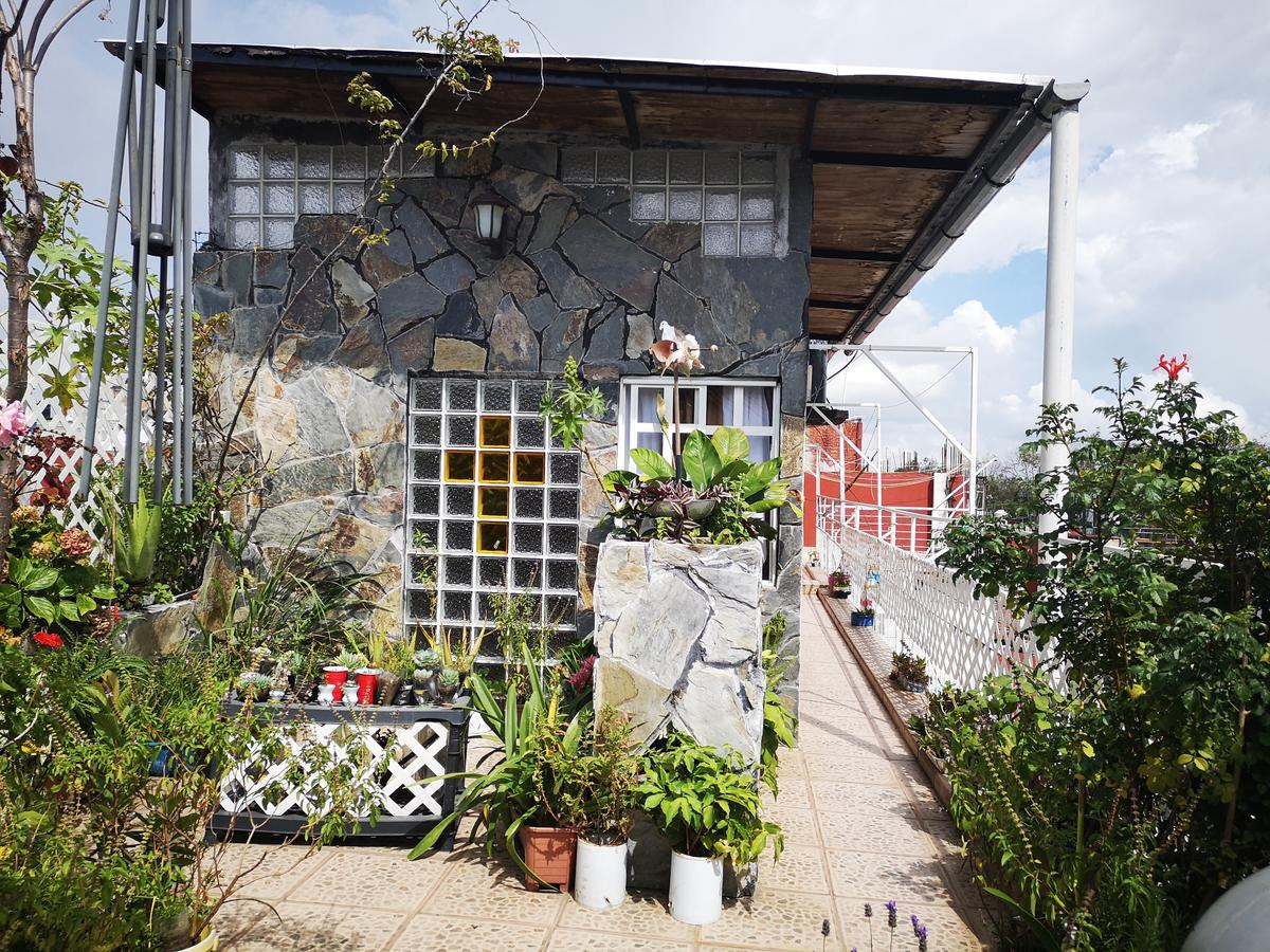 Foto Casa en Renta en  Xalapa ,  Veracruz  AGUACATAL, CABAÑA
