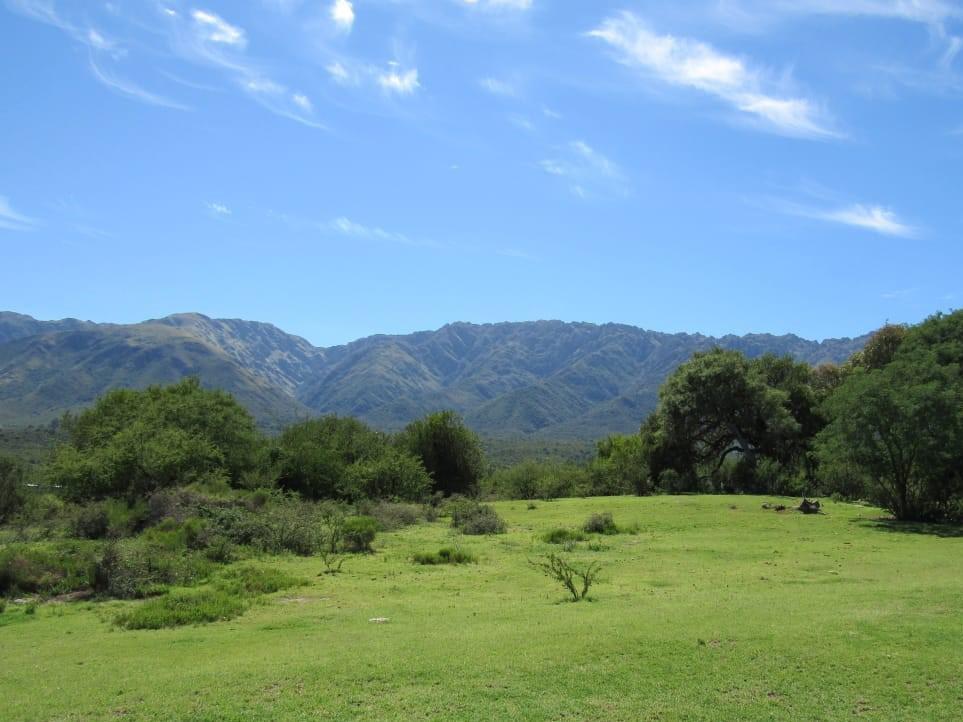 Foto Terreno en Venta en  Cortaderas,  Chacabuco                 VENDO LOTE DE 1000 M2 EN CORTADERAS SAN LUIS