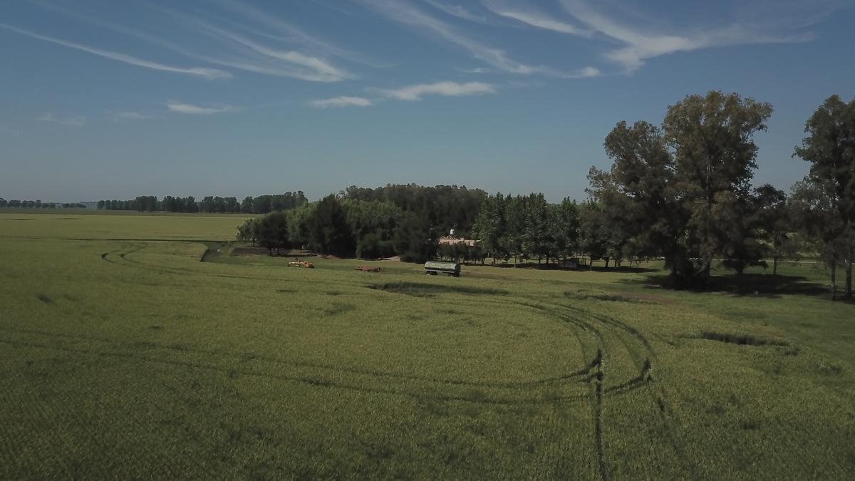 Foto Campo en Venta en  Capilla Del Señor,  Exaltacion De La Cruz    Estancia.  Campaso 100% agrícola sobre ruta, Asfalto