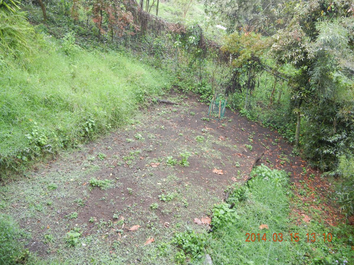 Foto Terreno en Venta en  Tlalnelhuayocan ,  Veracruz  Tlalnehuayocan, Rancho Viejo,