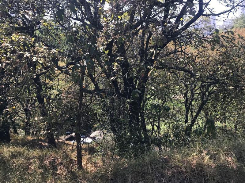 Foto Terreno en Venta en  Bosque Real,  Huixquilucan  Bosque Real