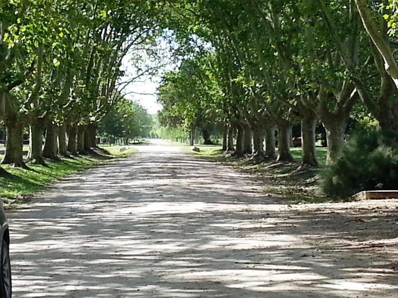 Foto Terreno en Venta en  Estancia Villa Maria,  Countries/B.Cerrado  Estancia Villa Maria Ezeiza