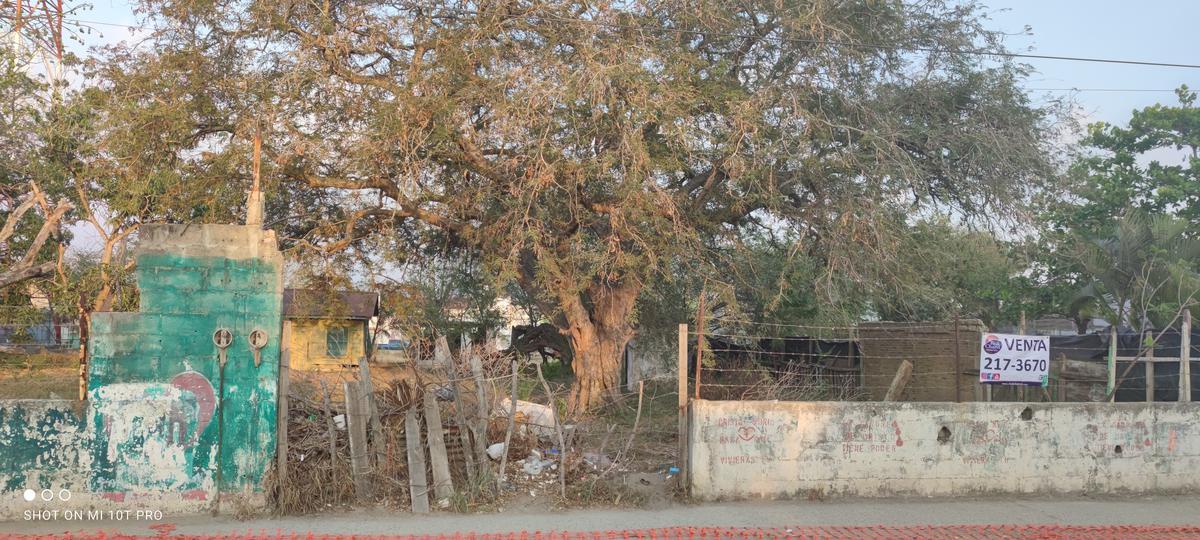 Foto Terreno en Venta en  Altamira,  Altamira  ZONA CENTRO, ALTAMIRA, TAM.