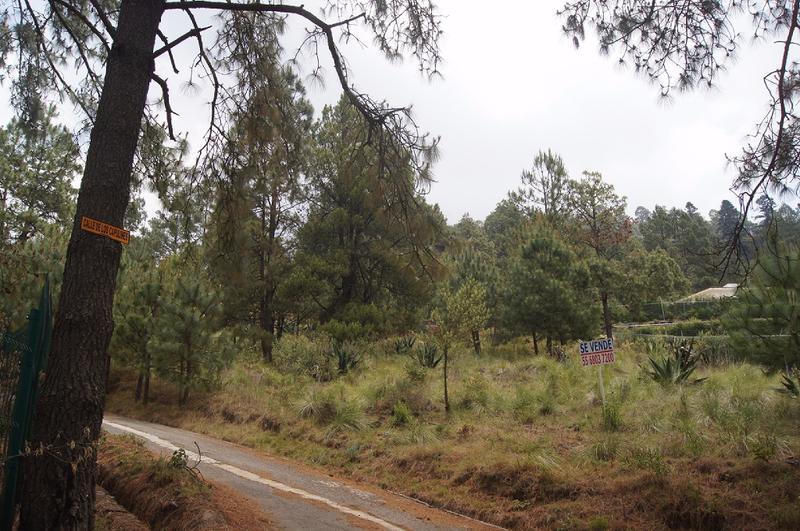 Foto Terreno en Venta en  Cañada de Alférez,  Lerma  Cañada de Alférez