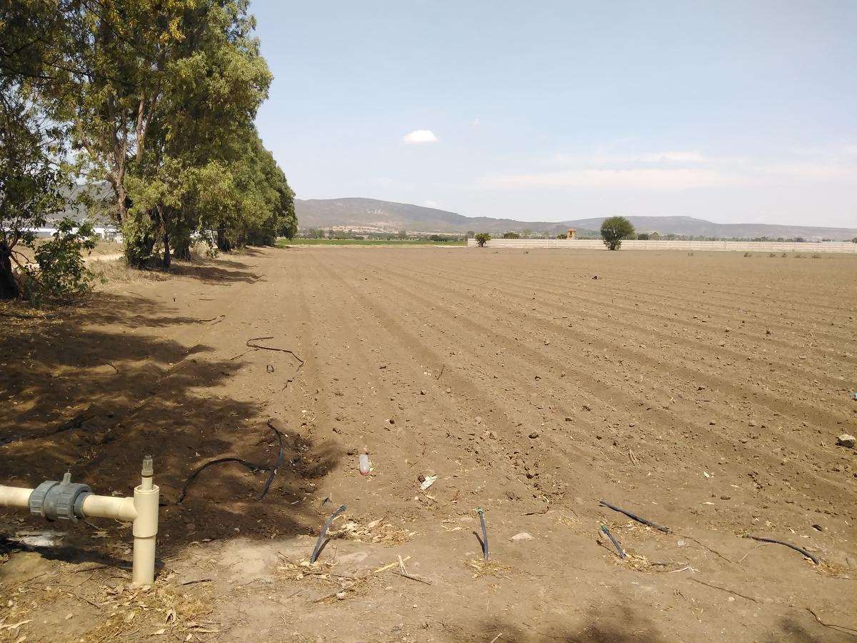 Foto Terreno en Venta en  FAtima (Ejido de Fuentezuelas),  Tequisquiapan  TERRENO EN VENTA TEQUISQUIAPAN
