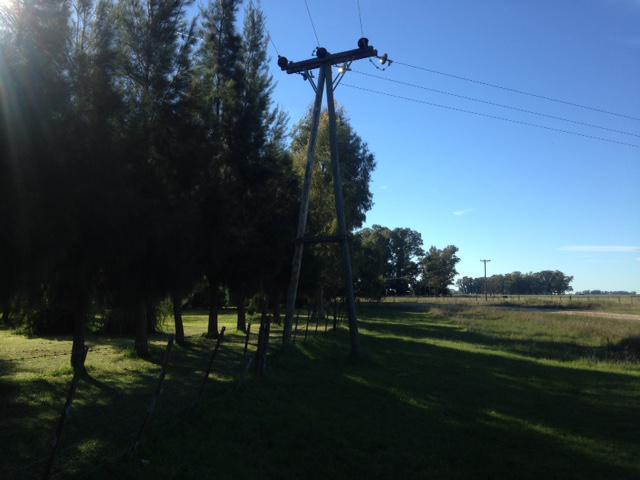Foto Campo en Venta en  Las Flores ,  Interior Buenos Aires  Las Flores, a 1km de Villa Pardo y 220km de CABA