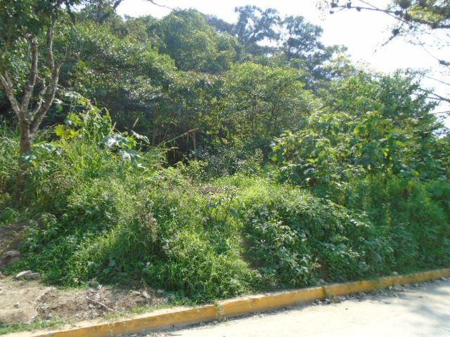 Foto Terreno en Venta en  Loma de las Flores,  Coatepec  EN VENTA, TERRENO  CERCA DE LOS JUZGADOS DE COATEPEC,VERACRUZ.,