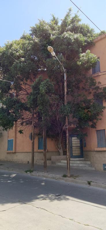 Foto Departamento en Venta en  Guemes,  Cordoba  Corro al 584