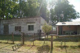 Foto Campo en Venta en  Las Flores ,  Interior Buenos Aires  Las Flores. A 6 km de RN°3 y 12 km de ciudad