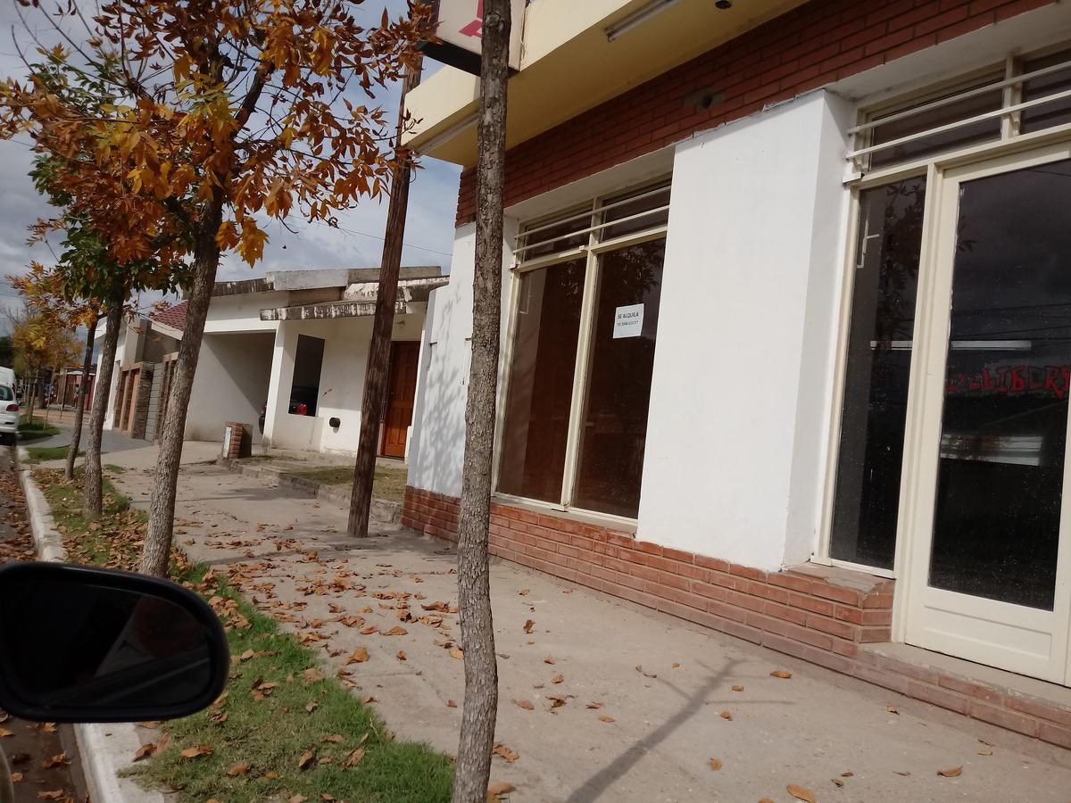 Foto Local en Alquiler en  Villa Dolores,  San Javier  AVENIDA SAN MARTIN