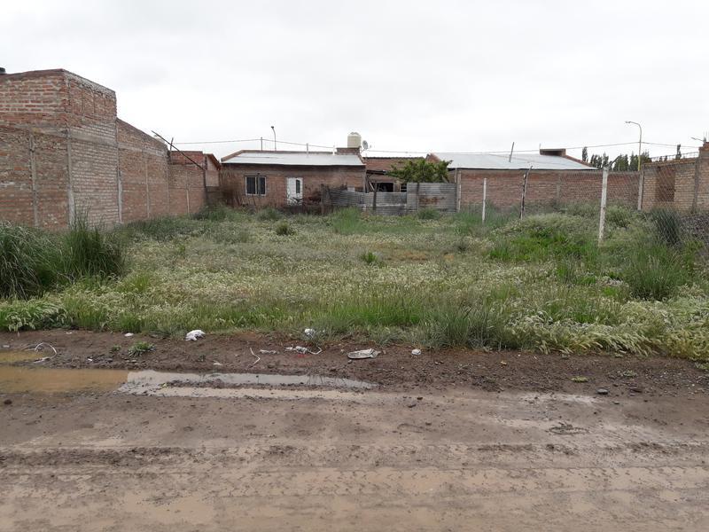 Foto Terreno en Venta en  Villa Regina,  General Roca  BARRIO DON RODOLFO